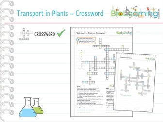 Transport in plants - Crossword (KS5)