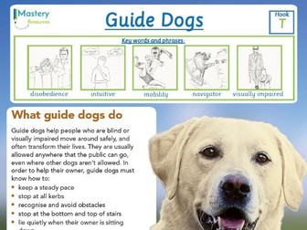Guide Dogs Comprehension KS2