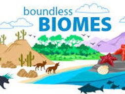 Second Lesson - Types of Biomes