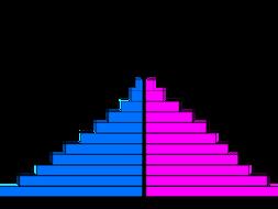 Geography Skills: Population Pyramids