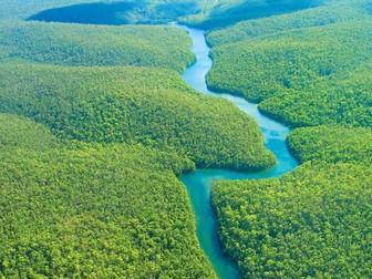 AQA GCSE Geography Tropical Rainforests Takeaway Homework