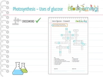 Photosynthesis - Uses of glucose - Crossword (KS3/KS4)