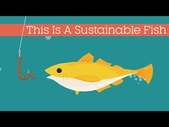 FISHING SUSTAINABILITY - Caught in a storm?