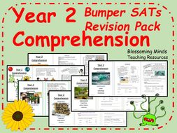 Bumper Year 2  SATs Comprehension Revision Pack
