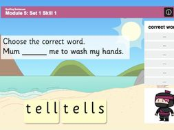 Spelling Sentences - Adding -s and -ing - Phase 3
