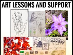 Art Lessons The Natural World