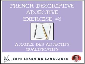 French Descriptive Adjectives Exercise #8 - Ajoutez un adjectif qualificatif