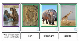 Wild-Animals.pdf