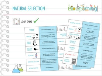 Natural Selection - Loop Game (KS5)