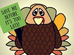 FREE BIRD Thanksgiving Literary Trivia Game for Middle School and High School