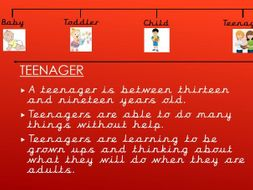 Year 2 Science. Animals, Including Humans. Lesson 5. Human life-cycle.