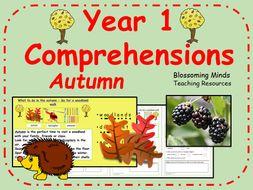 Year 1 comprehension - Autumn