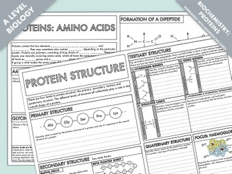 A Level Biology: Amino Acids & Protein Structure Summary Worksheets