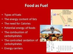 Food as fuel: how our bodies use it- Biology PowerPoint Lesson and Student Notes