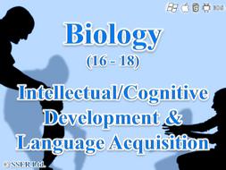 C.2.b. Development - Intellectual, Cognitive & Language Acquisition
