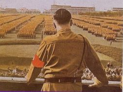 Nazi Germany Revision Flash Cards / Dingbats