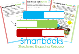 Functional Skills Tutorial - The Perfect Job