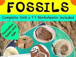 ~ What is carbon dating of fossils worksheet pdf 2019