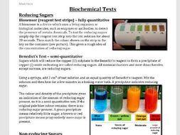 Biochemical Tests handout