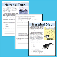 NarwhalsRI2.7RI2.5TPT.pdf