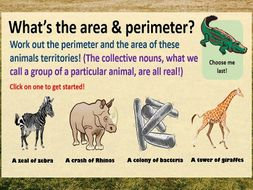 Area and Perimeter Animal Territory Interactive PowerPoint and Questions