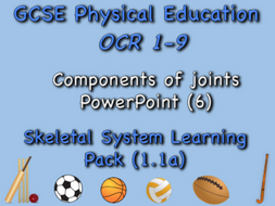 Skeletal System GCSE OCR PE (1.1a) Components of joints PowerPoint