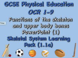 Skeletal System GCSE OCR PE (1.1a) Functions of the skeletal system and upper body bones PowerPoint
