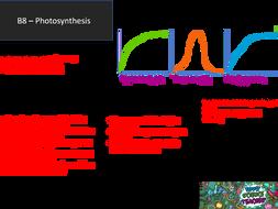 AQA GCSE 9-1 B8 Photosynthesis Revision Mat