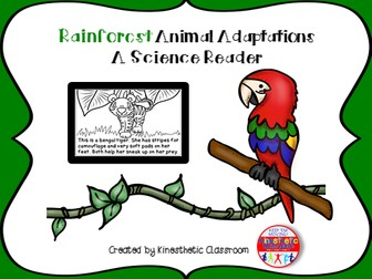 Rainforest Animal Adaptations - A Science Reader
