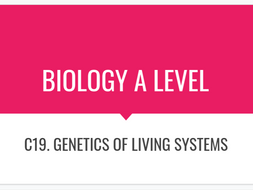 Biology genetics revision cards