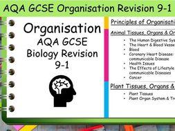 B2 Organisation AQA GCSE Science Biology Revision 9-1