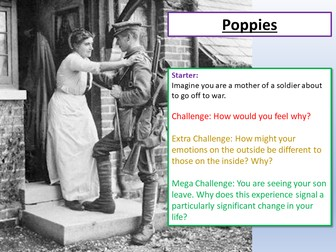 Poppies Power and Conflict