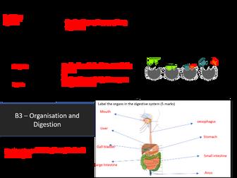 AQA GCSE 9-1 B3 Organisation and Digestion Revision Mat