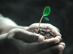 Soil testing practical mini workbook