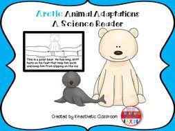 Arctic Animal Adaptations - A Science Reader