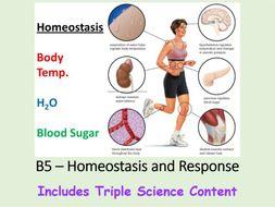 NEW AQA BIOLOGY GCSE (Triple Science) - HOMEOSTASIS & RESPONSE - (Full Chapter)