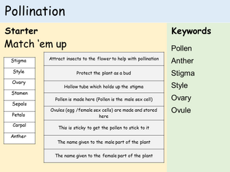 KS3 Plants - Lesson 3 - Pollination