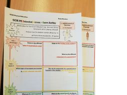 NEW GCSE PE - Exam Question Builders - (1) Anatomy & Physiology