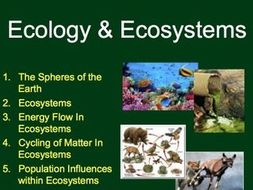 Ecology Unit: Complete Sustainable Ecosystems Unit - Lessons, Tests and Activities