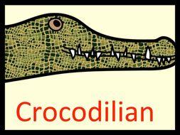 Crocodiles , Alligators  ...  Crocodilian !