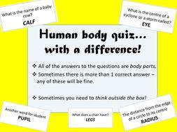 End of Term Quiz - Human Body
