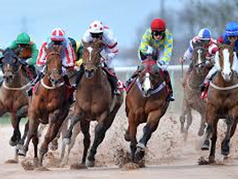 Experimental Probability Horse Race
