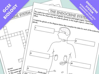 GCSE Biology: Endocrine System Worksheet Pack (Animal Hormones)