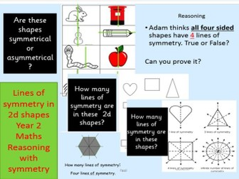 Lines of Symmetry in 2d shapes Year 2 TAF
