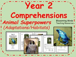 Year 2 SATs style comprehension non-fiction - Animal Superpowers