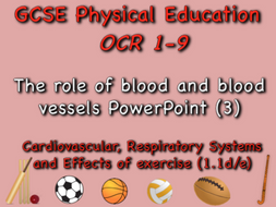 GCSE OCR PE (1.1d/e) - The role of blood and blood vessels PowerPoint