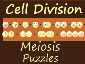 Meiosis Crossword and Word Search