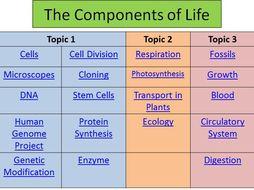 B2 Comprehensive Revision PowerPoints Edexcel