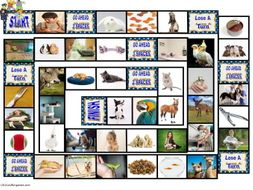 Pets and Pet Care Animated Board Game