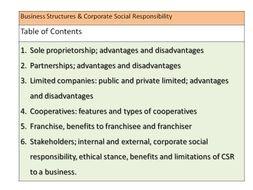 limitations of social responsibility